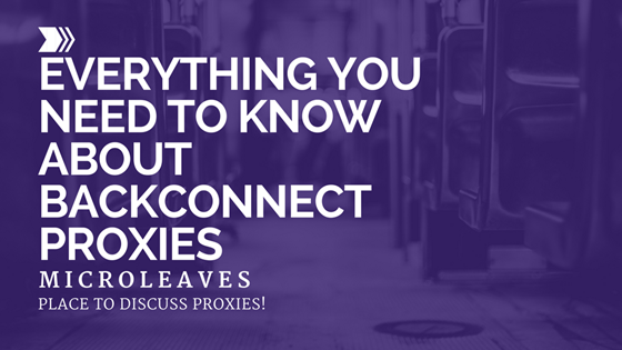 Everything You Need to Know About Backconnect Proxies
