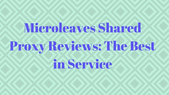 Microleaves Shared Proxy Reviews: The Best in Service