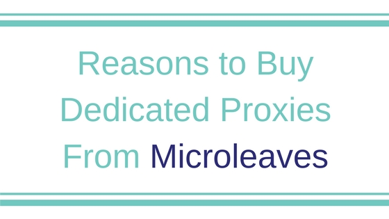 Reasons to Buy Dedicated Proxies From Microleaves