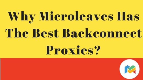 Why Microleaves Has The Best Backconnect Proxies?