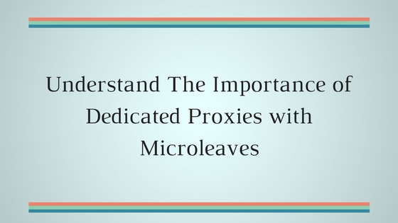 Understand The Importance of Dedicated Proxies with Microleaves