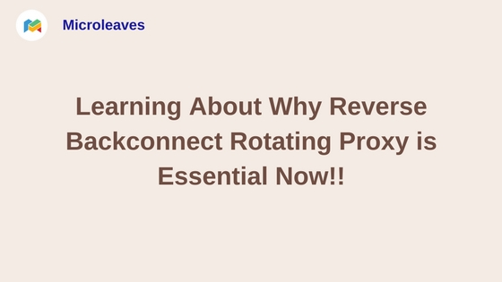 Learning About Why Reverse Backconnect Rotating Proxy is Essential Now