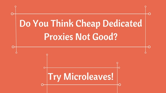Do You Think Cheap Dedicated Proxies Not Good? Try Microleaves!