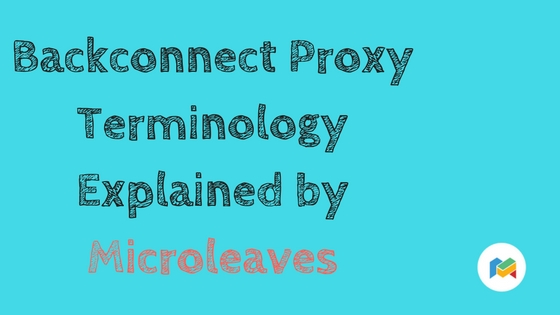 Backconnect Proxy Terminology Explained by Microleaves