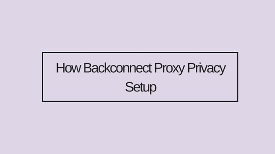 How Backconnect Proxy Privacy Setup