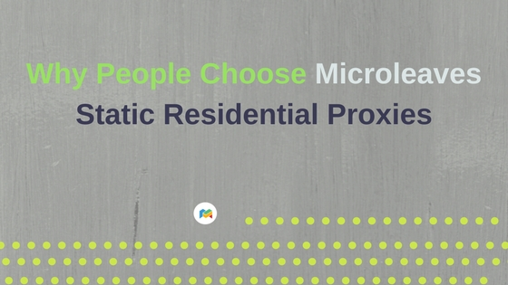 Why People Choose Microleaves Static Residential Proxies